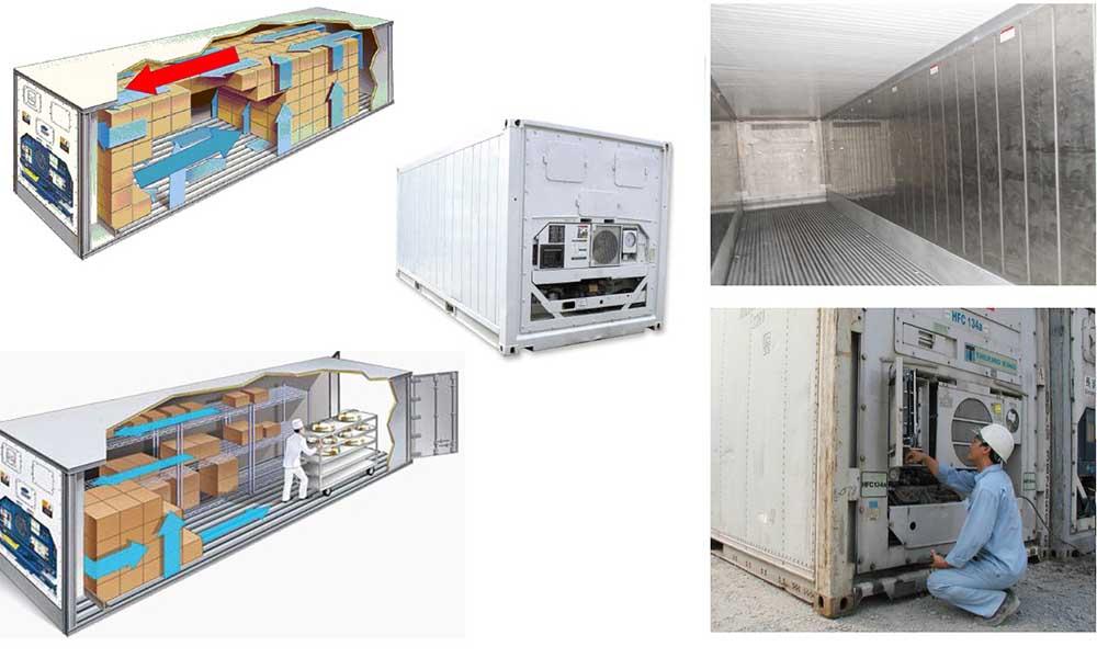 Một vài lưu ý khác với hàng hóa trong container lạnh